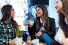 Café bebendo de três jovens mulheres e discurso na loja do café Fotografia de Stock