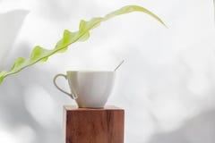 Café branco do copo com a folha verde pequena Fotografia de Stock Royalty Free
