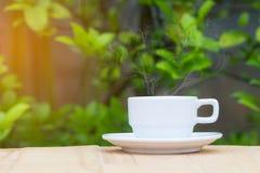 Café caliente con vapor en la tabla de madera y vagos borrosos de la planta verde Foto de archivo libre de regalías