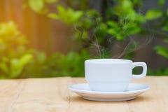 Café caliente en la tabla de madera con el fondo borroso de la planta verde Foto de archivo