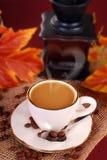Café chaud noir dans la tasse blanche pour l'automne Photographie stock libre de droits