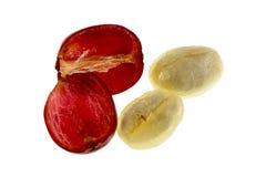 Café Cherry Fruit Anatomy foto de stock royalty free