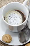 Café con espuma y la galleta de la leche Imagen de archivo libre de regalías