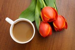 Café con los tulipanes Imágenes de archivo libres de regalías