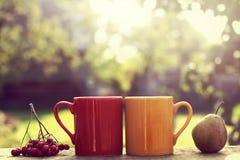 Café-coupure-dans-le-jardin Photographie stock