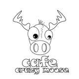 Café crazy moose Stock Photos