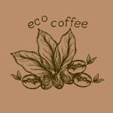 Café d'eco de logo illustration stock