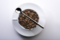 café d'haricot Images libres de droits