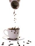 café d'haricots photo stock