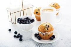 Café da manhã brilhante e pairoso com muffin de blueberry fotos de stock royalty free