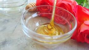 Café da manhã cor-de-rosa da flor do mel fresco no gotejamento concreto cinzento do movimento lento do fundo filme