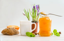 Café da manhã do cereal, do leite e dos anéis de espuma Fotografia de Stock