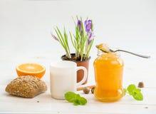 Café da manhã do cereal, do leite e dos anéis de espuma Foto de Stock