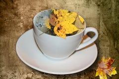 Café da manhã do outono com uma folha de um bordo Imagem de Stock Royalty Free