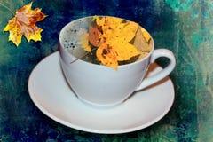 Café da manhã do outono com uma folha de um bordo Foto de Stock
