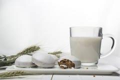 Café da manhã fácil da dieta do iogurte e do pão-de-espécie Ainda-vida com alimento e cereais em um fundo branco horizontal Fotografia de Stock