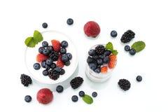 Café da manhã saudável caseiro com iogurte, baga e farinha de aveia imagem de stock