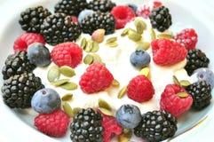 Café da manhã saudável com amoras-pretas, mirtilos e framboesas Fotos de Stock Royalty Free