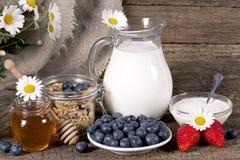 Café da manhã saudável com muesli Fotos de Stock Royalty Free