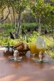 Café da manhã setup em uma exploração agrícola Foto de Stock Royalty Free