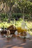 Café da manhã setup em uma exploração agrícola Imagens de Stock Royalty Free