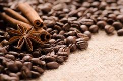 Café dans les grains, la cannelle et les astérisques de l'anis sur renvoyer Image libre de droits