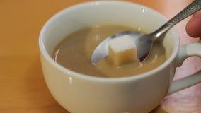 Café de absorción del cubo del azúcar metrajes