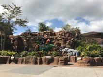 Café de forêt tropicale, ressorts de Disney, Orlando, la Floride images libres de droits
