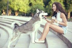 Café de hielo de consumición de la muchacha y el jugar con su perro fornido en el parque Imagenes de archivo