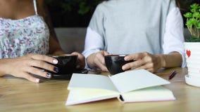 Café de la bebida de dos amigos de las mujeres en café Hembras que hablan y que beben el latte Fotos de archivo libres de regalías
