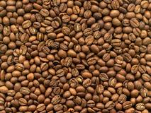Café del grano en macro fotos de archivo