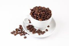 Café del grano y taza blanca Foto de archivo libre de regalías