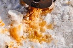 Café derramado en nieve Imagen de archivo libre de regalías