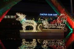 Café do clube do cacto com as decorações da luz de Natal fotografia de stock