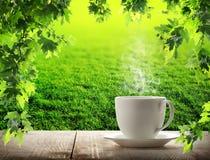 Café do copo da manhã Imagens de Stock Royalty Free