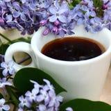 Café e lilás Fotos de Stock