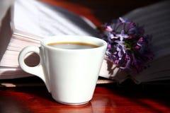 Café e lilás Foto de Stock