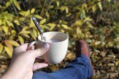 Café en el jardín Foto de archivo libre de regalías