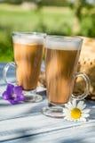 Café en el jardín soleado del verano Imagenes de archivo