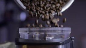 Café en grano y máquina metrajes