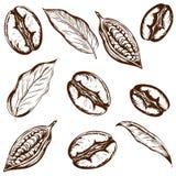 Café et cacao de modèle illustration libre de droits