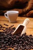 Café et graine de café images libres de droits