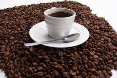 Café et graine de café de tasse photo libre de droits