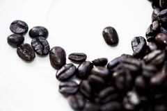 Café et haricots Photo libre de droits
