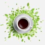 Café et illustration de vecteur de feuilles de vert Photographie stock