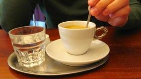 Café express en el café vienés clásico, Austria almacen de video
