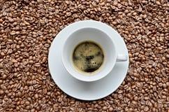 Café express en los granos de café Fotografía de archivo
