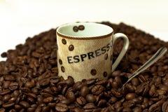 Café express v2 Photographie stock libre de droits