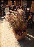 Café exterior em Varsóvia, Polônia fotografia de stock royalty free