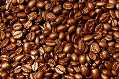 Café-feijões Imagem de Stock Royalty Free